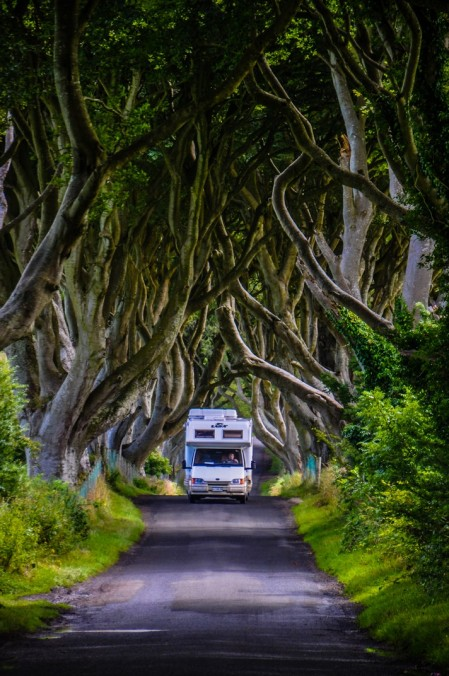 irlanda del nord-the dark hedges