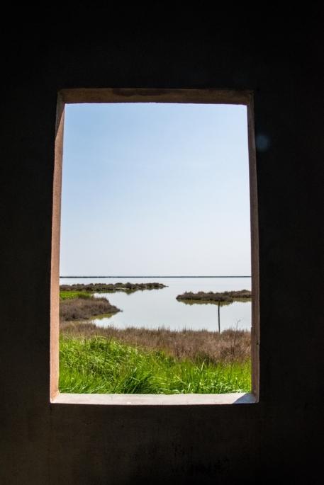 delta del po oasi barca