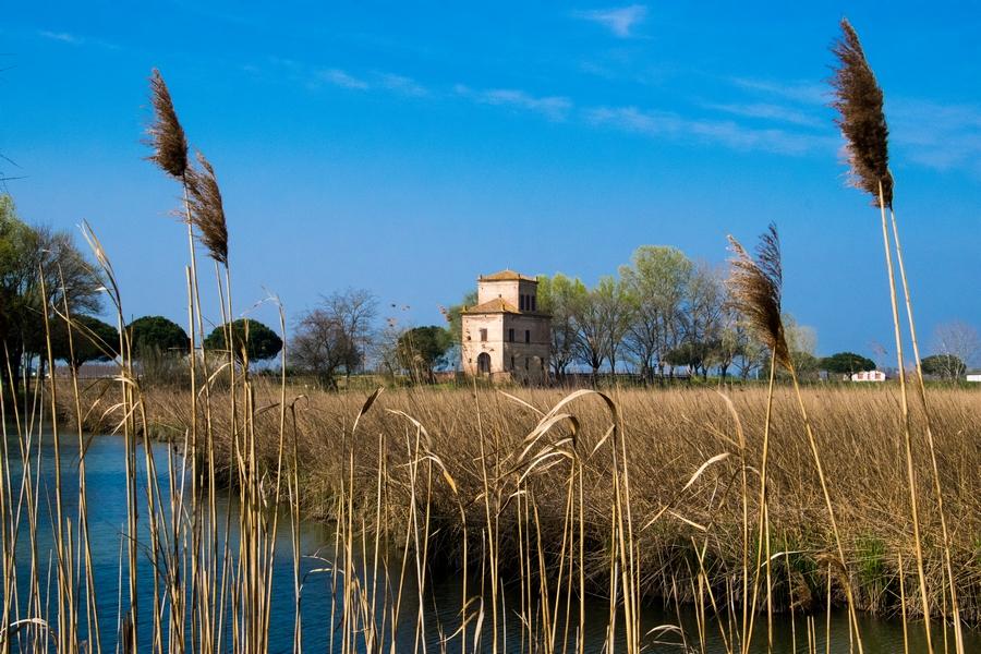 delta del po oasi cascina