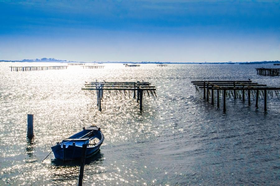 delta del po pesca oasi allevamento