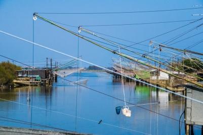 delta del po pesca