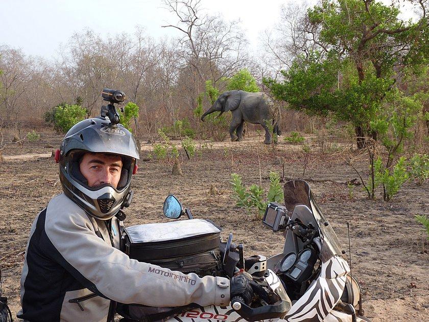 elefante-riserva-moto