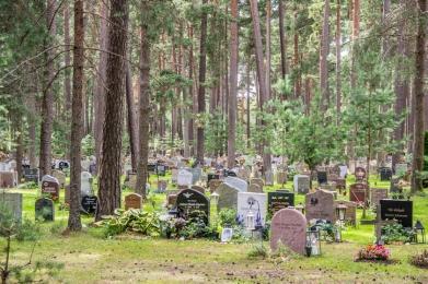 Le semplici tombe tra gli alberi al cimitero Skogskyrkogården, Patrimonio dell'UNESCO